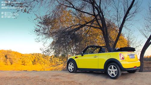 MINI Cooper Cabrio * MIautumn