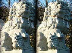 DSCF1408 鷲神社の狛犬 (parallel 3D) - by yoshing_BT