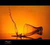 \ = (Faisal | Photography) Tags: glass yellow speed studio photography drops high shot l usm maestro f28 ef ef2470mmf28lusm 2470mm orangesplash speedlitetransmitterste2 canoneos50d canonspeedlite580exii المايسترو faisal|photography