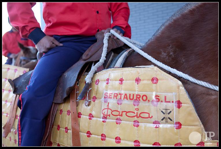 caballo-anuncio