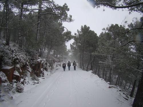 Los Reales nevado (11)