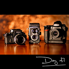 Day 47:Trio (L S G) Tags: rolleiflex 50mm nikon sb600 d3 nikonf2as sb24 project365 365days rolleiflexautomat d80 strobist 365daysproject nikond3 365community elbokehwall 365daysvv