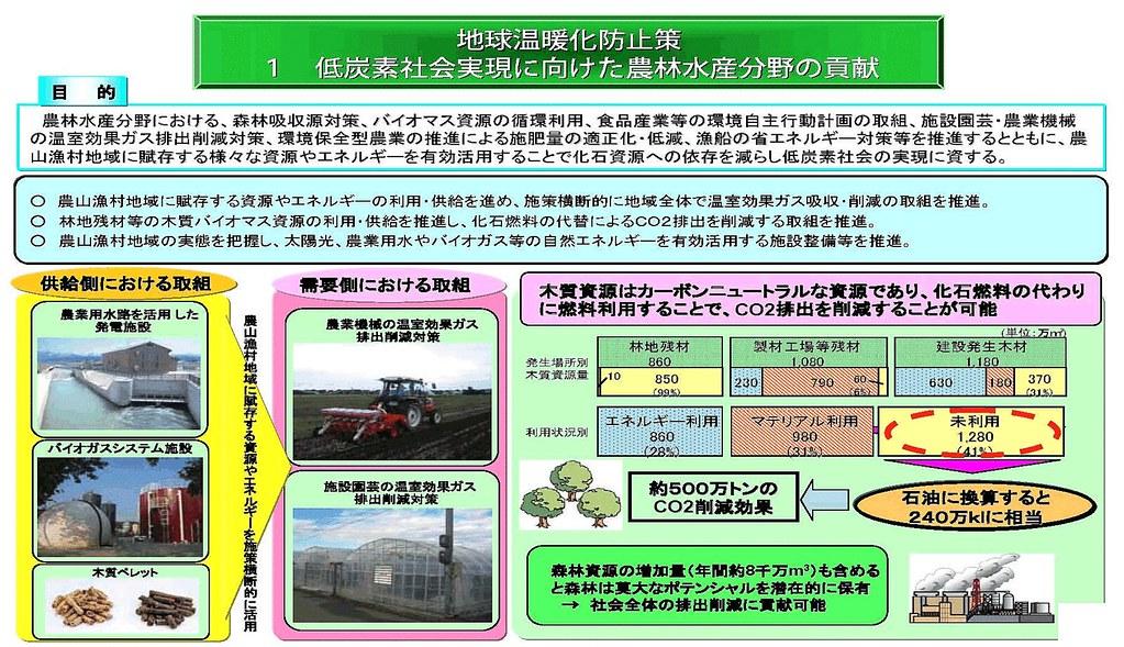 木質バイオマス 2010.3.7(1-4)