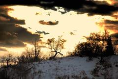 North To Alaska (MarculescuEugenIancuD5200Alaska) Tags: alaska clouds gold anchorage citrit theunforgettablepictures goldstaraward dragondaggeraward saariysqualitypictures sailsevenseas