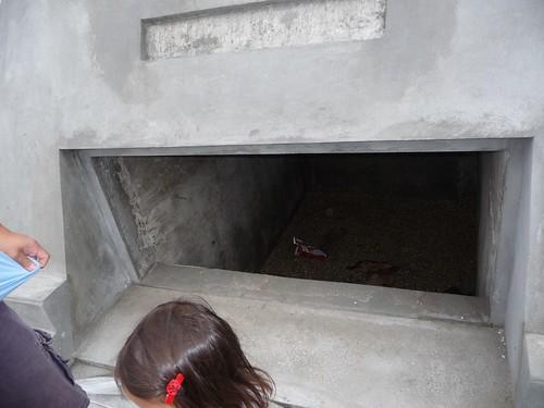 someone threw doritos in nicholas cage's tomb. doh!