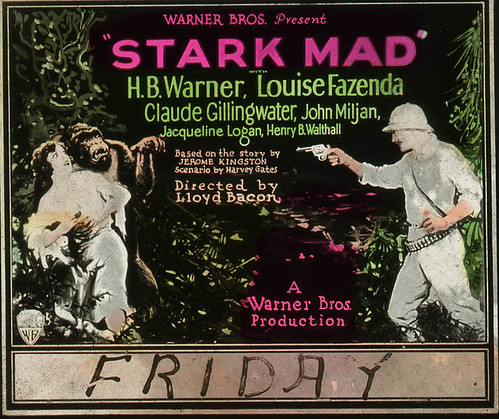 STARK MAD (1929) slide lit detail