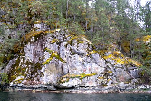 Sunshine Coast Tours - Skookumchuck Narrows / Sechelt Inlet