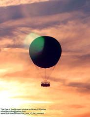Hot Air Ballooning During Sunset (nrhodesphotos(the_eye_of_the_moment)) Tags: sunset sky orange clouds orlando shadows ride florida passengers disneyworld wires hotairballooning tether nrhodesphotosyahoocom wwwflickrcomphotostheeyeofthemoment theeyemomentphotosbynolanhrhodes img3427nhrt