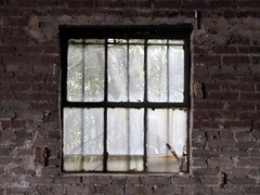 mule barn window