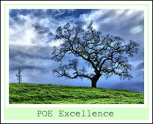 POE Excellence Award quot;