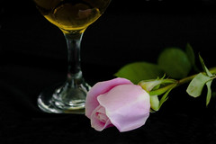 When A Man Loves A Woman (Mona Hura) Tags: pink woman man flower love glass rose movie big soft mood wine drink blossom song valentine cant mind when his keep loves else bud nothing chill tender sledge percy thebigchill percysledge 8909 whenamanlovesawoman cantkeephismindonnothingelse