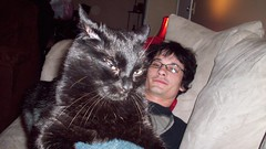 Hubby and Blackula (CassieL33) Tags: blackcat nirvana kitty husband couch lounging siouxcity