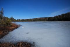 Echo Lake I (wackybadger) Tags: lake tree ice water wisconsin nikon shoreline echolake frozenlake conifer sna nikond60 forestcounty wisconsinstatenaturalarea echolakesna sna445