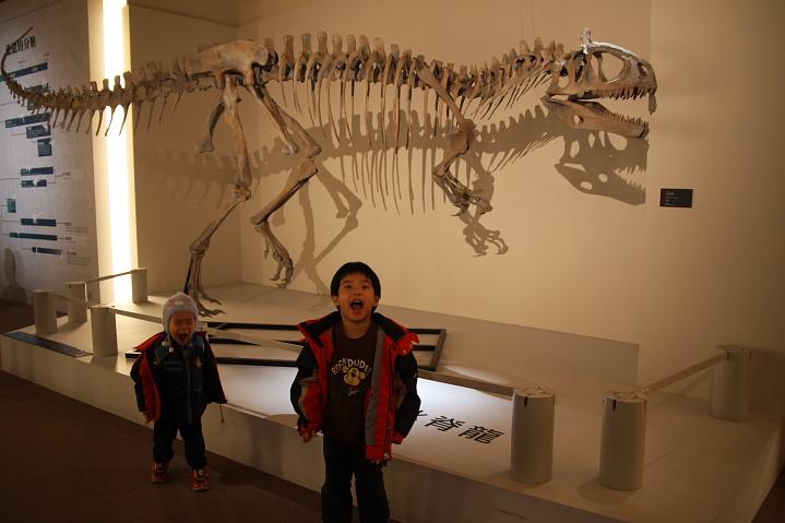 中正廟恐龍展000012