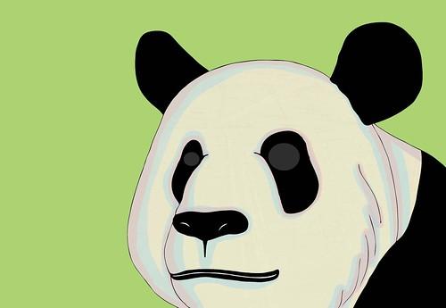 panda oh panda