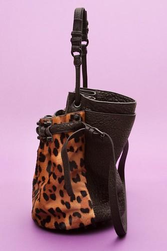 2-Leopard