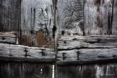 IMG_2246_b (Acchiapparatti) Tags: canon italia porta distillery umbria legno orvieto eos450d