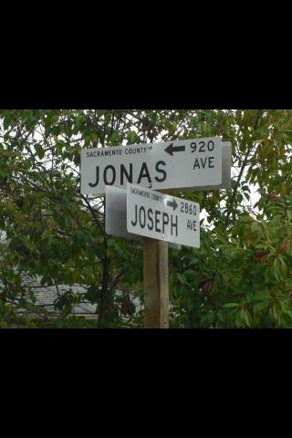 joseph-jonas