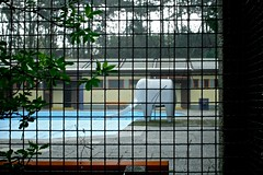 Elefant 1 (cb99one) Tags: vienna wien city pool schwimmbad
