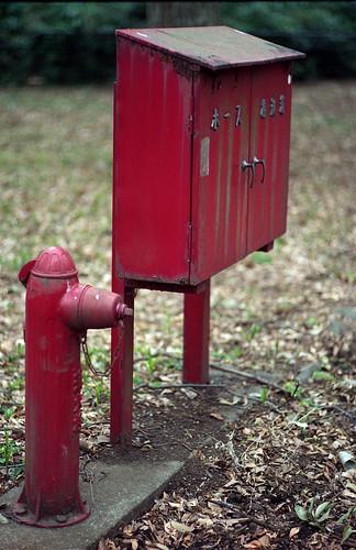 毎度おなじみの消火栓