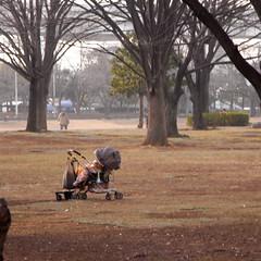 Shin-Koiwa Park 02