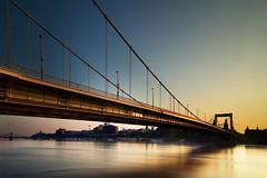 Ébredés a híd alatt / awakening under the bridge