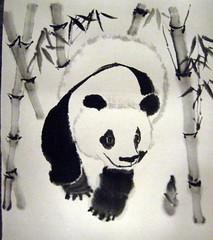 Panda for Macy