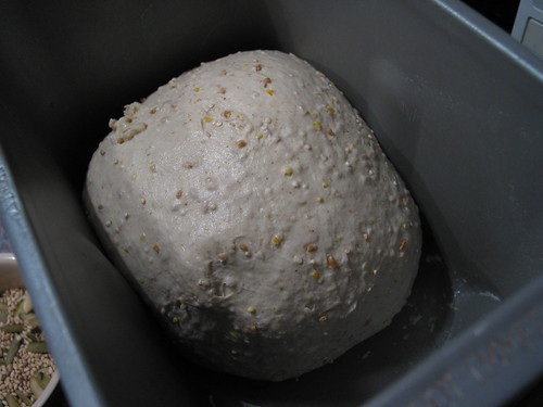 well-gluten-developped dough