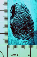 Durham Mark (CSI Will) Tags: print lite glow mark finger crime fluorescent glowing fluorescence fingerprint forensic