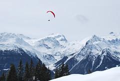 Schneeschuhprofi on Tour - Alpilakopf 02.04.2010