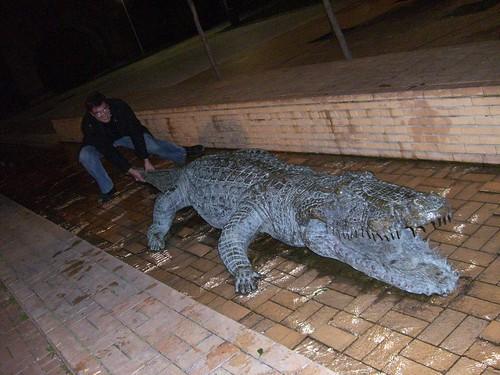 Hunting a Vitorian crocodile