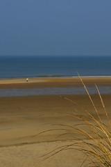 Depuis la dune (Katia SANCHEZ Photography) Tags: mer silhouette nikon horizon sable paysage plage flou oyat