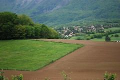 Tapis et moquette ~ Carpet and fitted Carpet (Michele*mp) Tags: mountain france field rural montagne grenoble geotagged countryside europe champs may chartreuse mai fields campagne champ isre dauphin grsivaudan mywinners francelandscapes valledugrsivaudan michelemp geo:lat=45257519 geo:lon=5860927