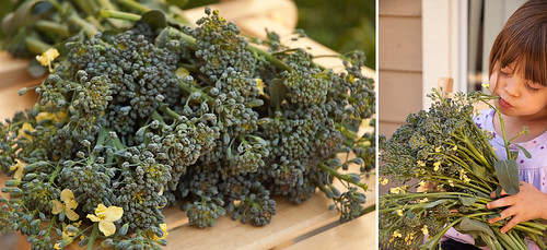 Broccoli Diptych