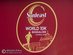 Sunfeast World 10k 2010 Logo
