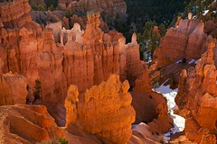 Reflected light (Rozanne Hakala) Tags: plateau spires arches canyon erosion explore limestone bryce amphitheater brycecanyon fins formations pinnacles hoodoos geological brycecanyonnationalpark mazes paunsaugunt
