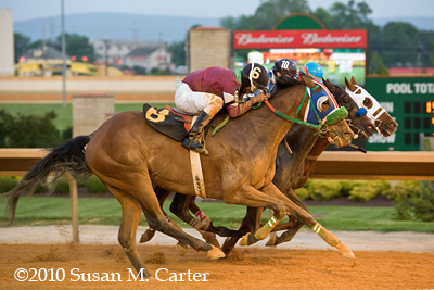 Forbes wins at Charles Town Races. Thoroughbred Horse Racing.