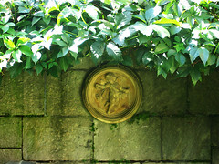 veranda-engel (bluemacgirl) Tags: plants green stone wall angel garden grey gray pflanzen jardin grau thuringia engel stein garten mauer grun camburg thuringen