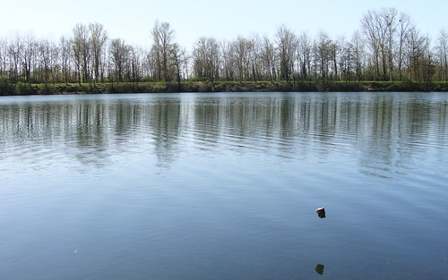 spring, lake and flying stone