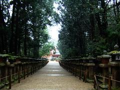 Nara-Gran Santuario Kasuga-Japn 16 (Rafael Gomez - http://micamara.es) Tags: heritage japan de la shrine great gran nara shinto templo kasuga japn humanidad patrimonio ph456 sintoista