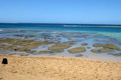Kaua'i - Ha'ena: Tunnels Beach (wallyg) Tags: hawaii kauai haena makuabeach tunnelsbeach kauaicounty haenabeachpark