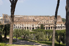 View of Colosseum from Palatine Hill