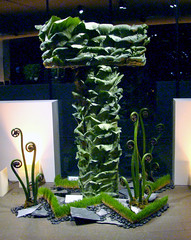 DSC06500_1458 Fiddleheads (godutchbaby) Tags: sanfrancisco california goldengatepark green tower art grass t flora lobby fiddlehead slate ferns riverrocks floristry mhdeyoungmuseum bouquetstoart2010 fneartsmuseumsofsanfrancisco
