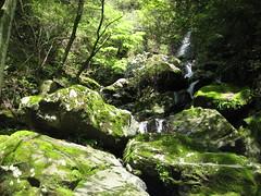 South Izu Hiking