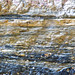 Rock365 : 12 06 2010 : Mylonitised Gabbro