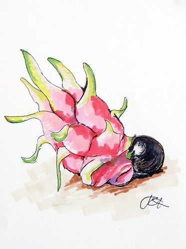 Crouching Squashball Hidden Dragonfruit: illustration