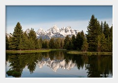 Serenity Now (idashum) Tags: morning reflection pine reflections landscape nationalpark nikon bravo searchthebest earlymorning calm wyoming grandtetons teton tetons ida pinetrees shum grandtetonnationalpark d300 schwabacherlanding schwabacher idashum 2010dcpt