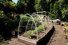Garden Conservancy Open Day