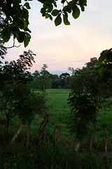baudchon-baluchon-guatemala-tikal