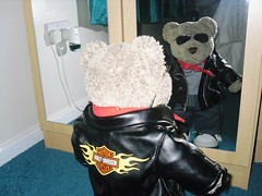 Ted the rock star 4 (pefkosmad) Tags: bear cute rock star teddy guitar plushie studmuffin tedric